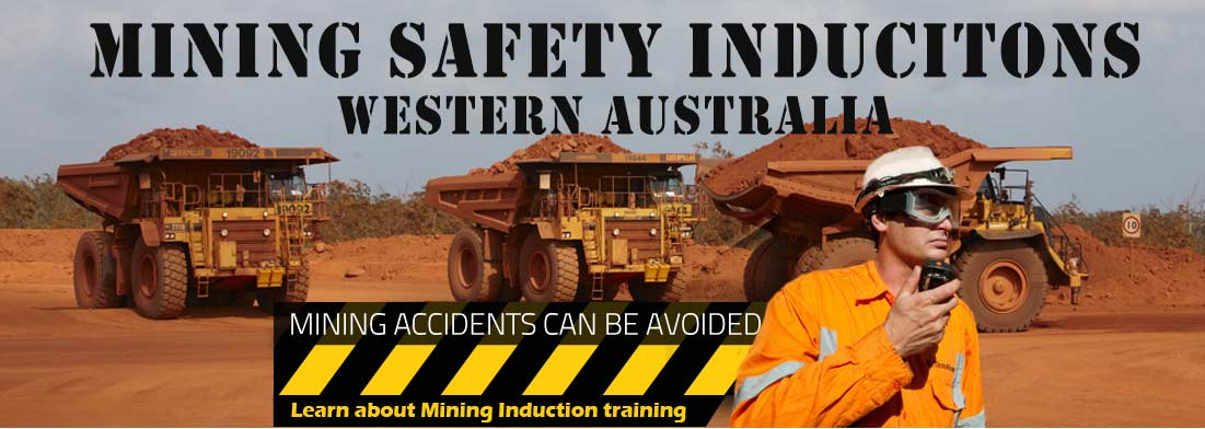 standard 11 mining induction information iMINCO mining training