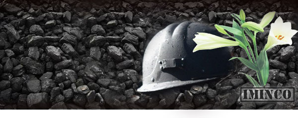 iMINCO NSW Mining Fatalities - Safety training is critical