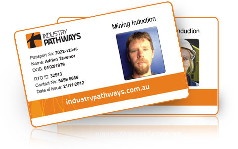 Standard 11 sample generic mining induction card
